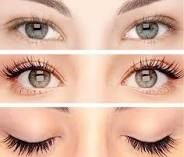 Eyelash Tint Photo